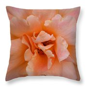 Abstract Peach Rose Throw Pillow