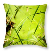 Abstract Pond Scum Throw Pillow