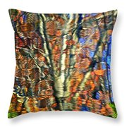 Abstract Reflection Photo Throw Pillow