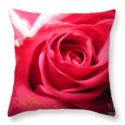 Abstract Rose 4 Throw Pillow