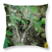 Abstract Spider Web Throw Pillow