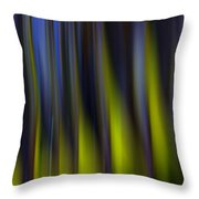 Abstract Vertical Red Yellow Blue And Green Throw Pillow