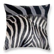 Abstract Zebra Throw Pillow
