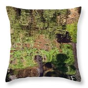 Abstracted Reflection Throw Pillow