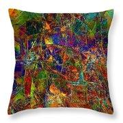 Abstraction 0380 Marucii Throw Pillow