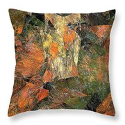 Abstraction 0585 Marucii Throw Pillow
