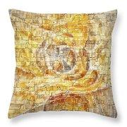 Abstraction 561-11-13 Marucii Throw Pillow