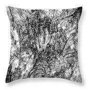 Abstraction B-w 0554 - Marucii Throw Pillow