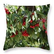 Abundant Cherries Throw Pillow