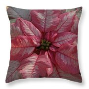 Abundant  Throw Pillow