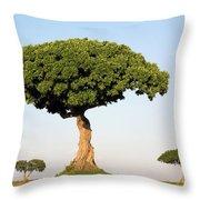 Acacia Trees Masai Mara Kenya Throw Pillow