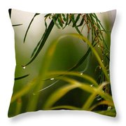 Acacia Water Drops Throw Pillow