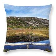 Acadia  Autumn Throw Pillow