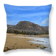 Acadia Beehive In Winter Throw Pillow