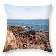 Acadia Coast Throw Pillow