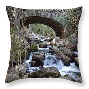 Acadia National Park Bridge Throw Pillow