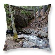 Acadia National Park Carriage Road Bridge Throw Pillow