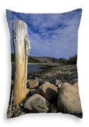 Acadia National Park - Maine Usa Throw Pillow