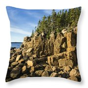 Acadia Seascape Throw Pillow