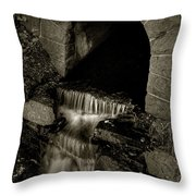 Acadia Waterfall Throw Pillow