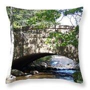 Acadian Stream_100_1934 Throw Pillow