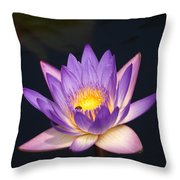 Accents On A Purple Waterlily... Throw Pillow