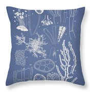 Acetabularia Caraibica And Chondria Intricata Throw Pillow by Aged Pixel