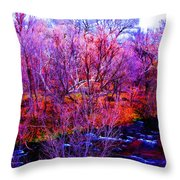 Acid By The Creek Throw Pillow