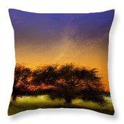 Acid Sunset Throw Pillow