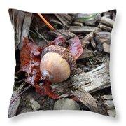 Acorn A Copia Throw Pillow