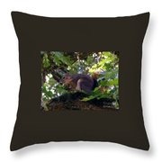 Acorn Grip Throw Pillow