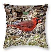 Acorn Hunting Throw Pillow