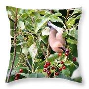 Acrobird Throw Pillow
