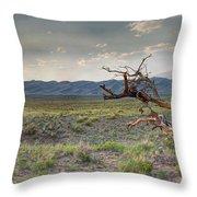 Across A Great Wilderness Throw Pillow