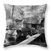 Across The Stream Throw Pillow