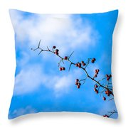 Ad Astra Throw Pillow