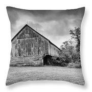 Adams County Barn 2923b Throw Pillow