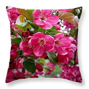 Adams Crabapple Blossoms Throw Pillow