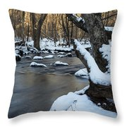 Adamsville Brook Throw Pillow