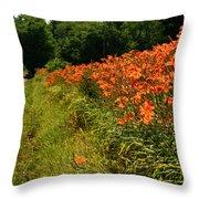 Adamsville Lilies 1 Throw Pillow