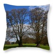 Adare Manor Grounds Throw Pillow