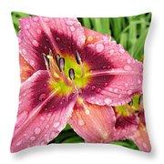 Addie Branch Smith Daylily Drops Throw Pillow