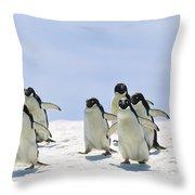 Adelie Penguin Group Running Antarctica Throw Pillow