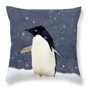 Adelie Penguin Standing In Fresh Throw Pillow