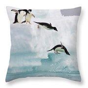 Adelie Penguins Diving Off Iceberg Throw Pillow