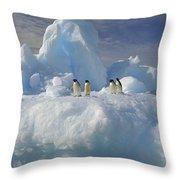 Adelie Penguins On Iceberg Antarctica Throw Pillow