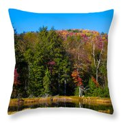 Adirondack Color IIi Throw Pillow