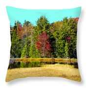 Adirondack Color Iv Throw Pillow