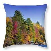 Adirondack Color Ix Throw Pillow