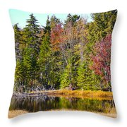 Adirondack Color Near Old Forge New York Throw Pillow